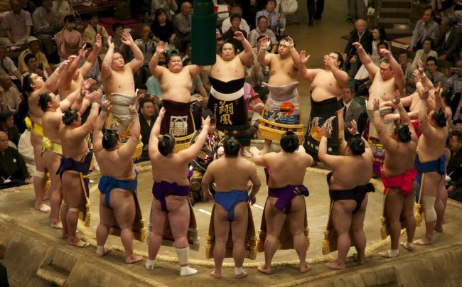 Фото прикол  про сумо