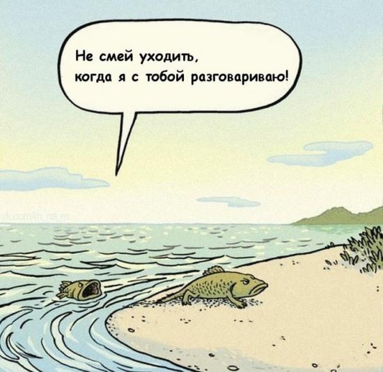 Картинка  про рыбу и эволюцию