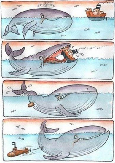 Картинка  про китов и корабли