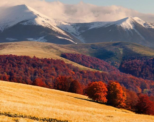 Фото прикол  про природу, горы и осень