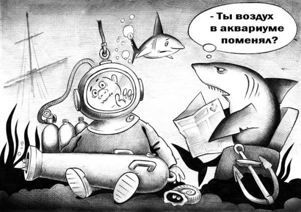 Картинка  про акул, аквариум черная