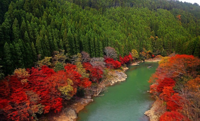 Фото прикол  про осень и природу