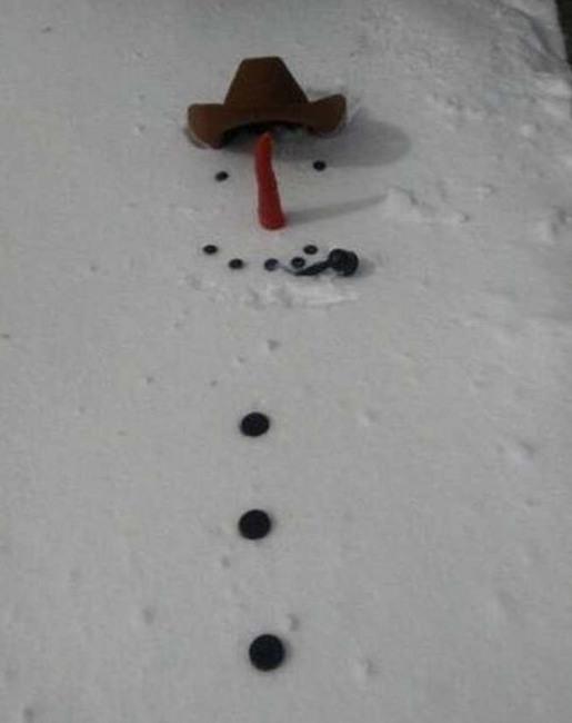 Фото прикол  про снеговика