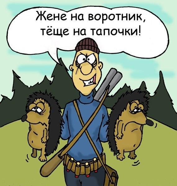 Картинка  про ежей и охотников