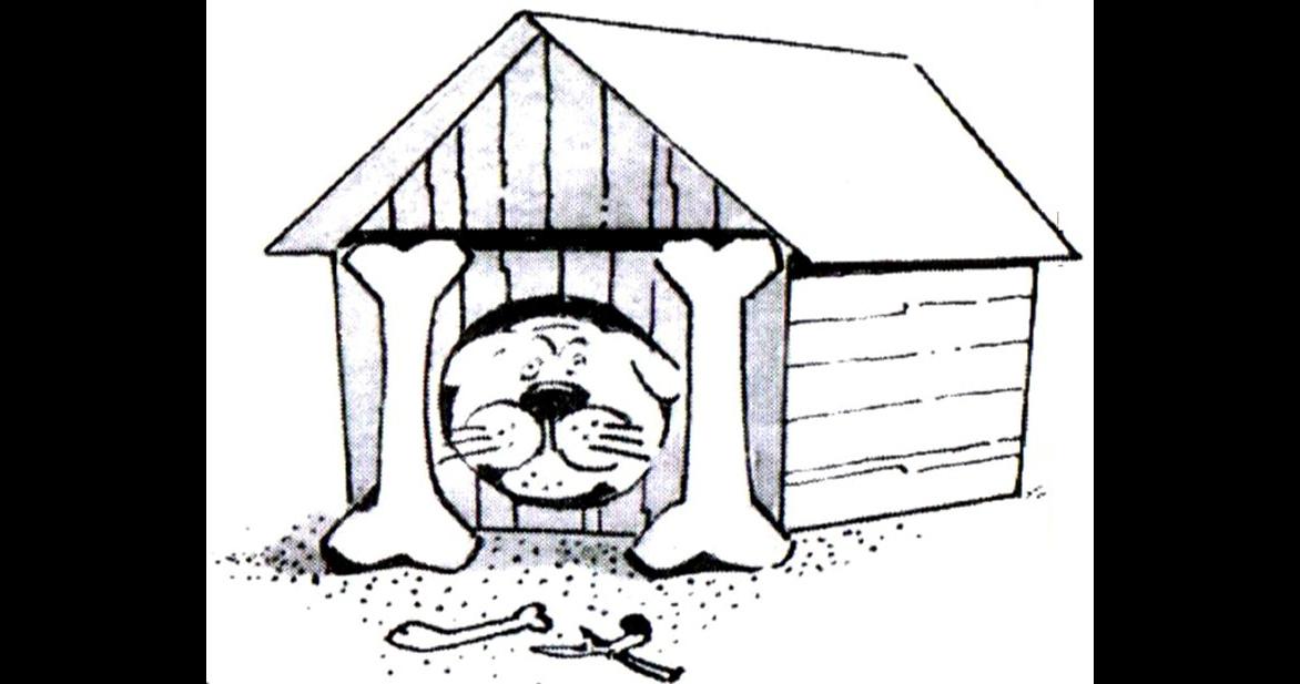радио картинка щенка у конуры время оккупации