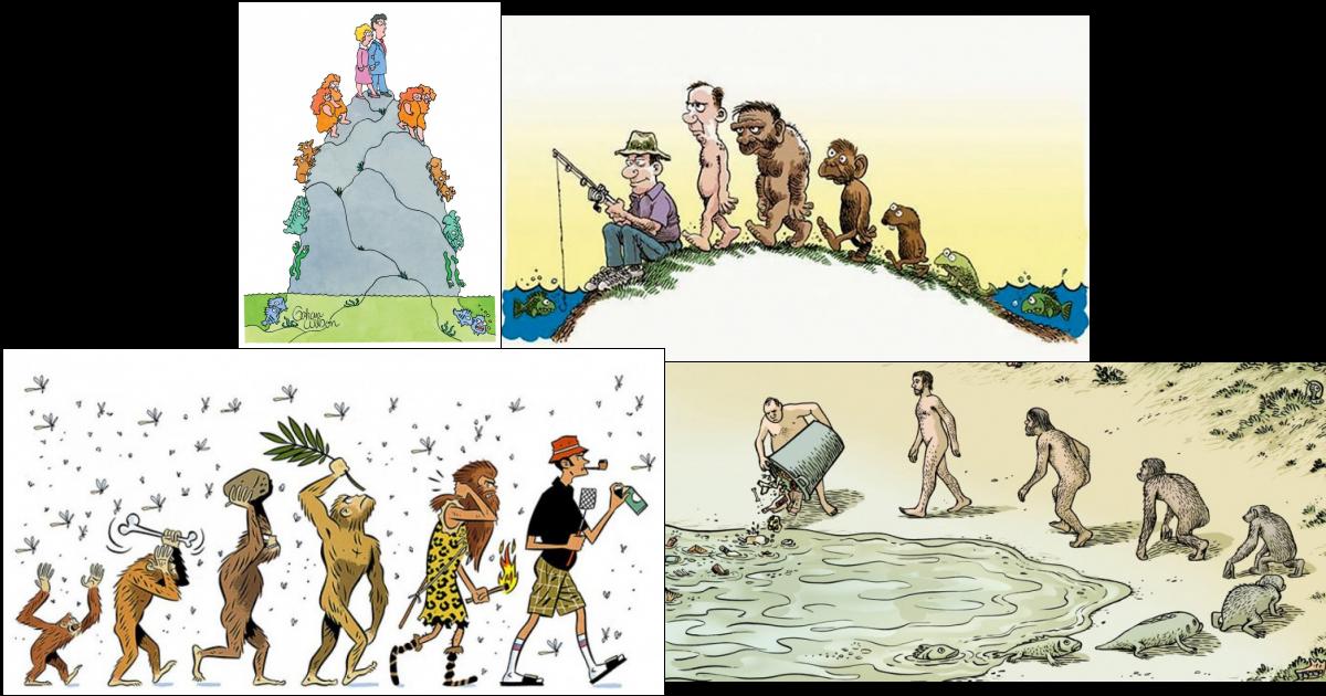 Приколы про эволюцию картинки