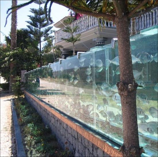 Фото прикол  про аквариум