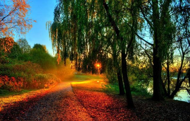 Фото прикол  про закат