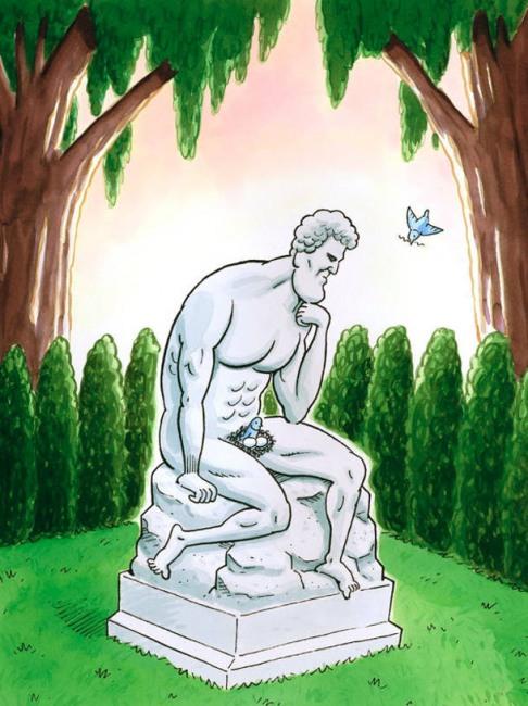 Картинка  про памятник, птиц пошлая