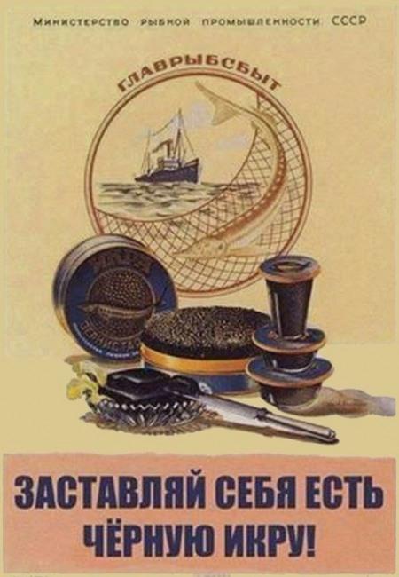 Картинка  про икру, реклама плакат