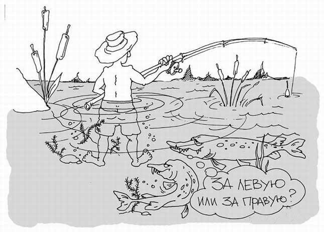 Картинка  про рыбалку, рыбаков, рыбу черная