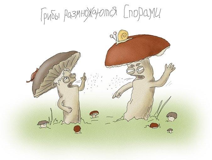 Встречи, приколы про грибы картинки