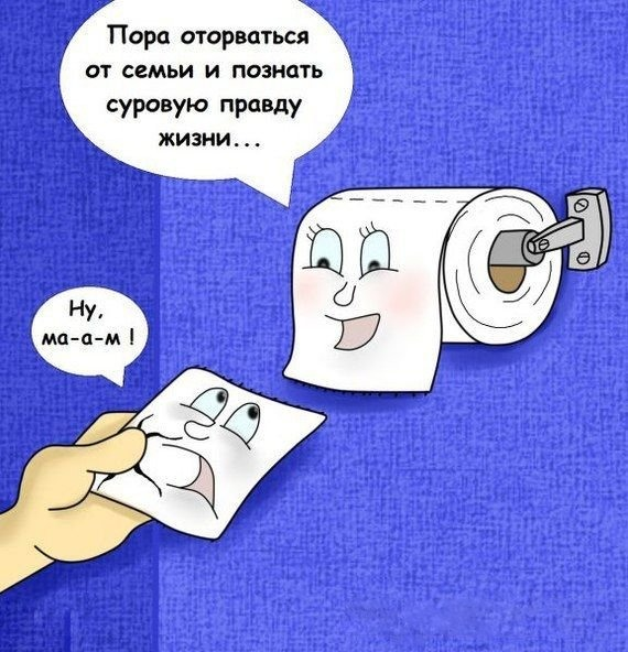 Картинка  про туалетную бумагу