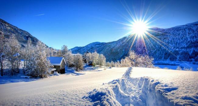 Фото прикол  про зиму и снег