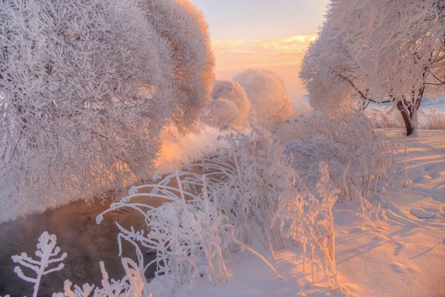 Фото прикол  про зиму и иней