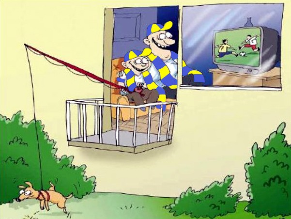 Картинка  про футбол и собак