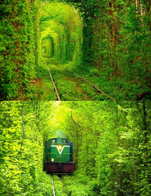 Фото прикол  про поезда