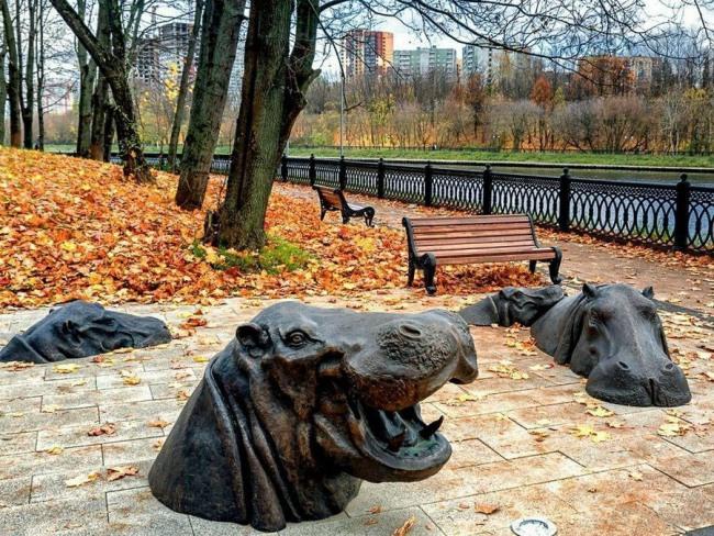 Фото прикол  про бегемота и памятник