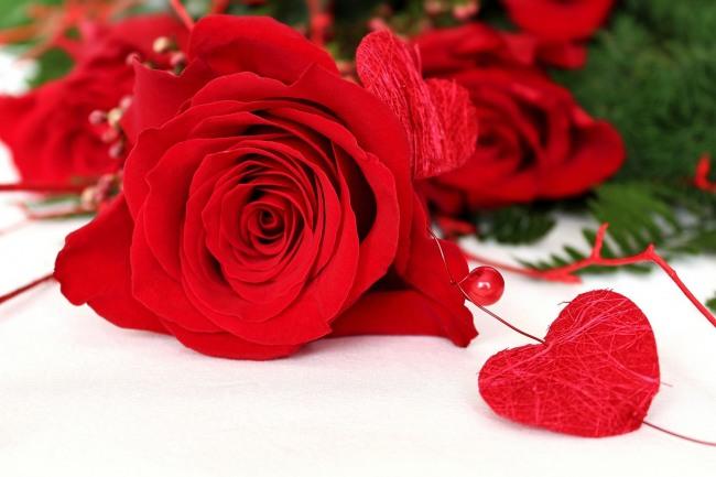 Фото прикол  про романтику, валентинку и розу