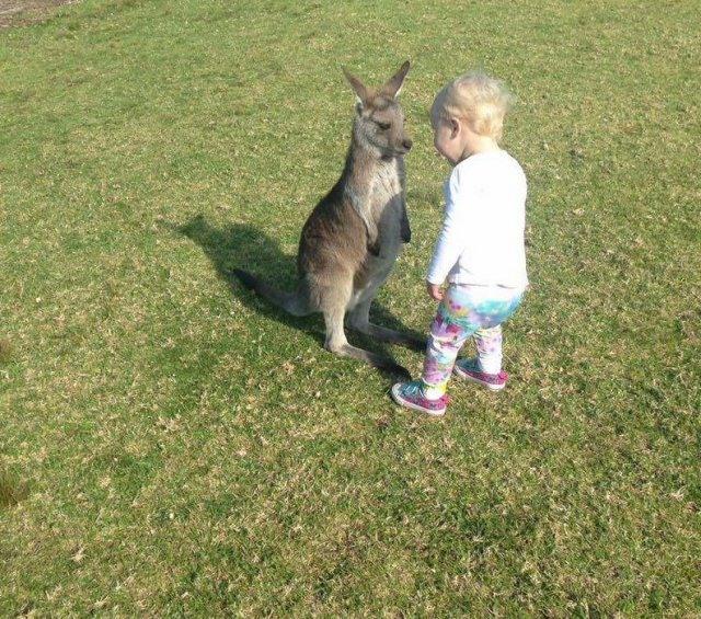 Фото прикол  про кенгуру и детей