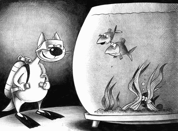 Картинка  про котов и аквариум