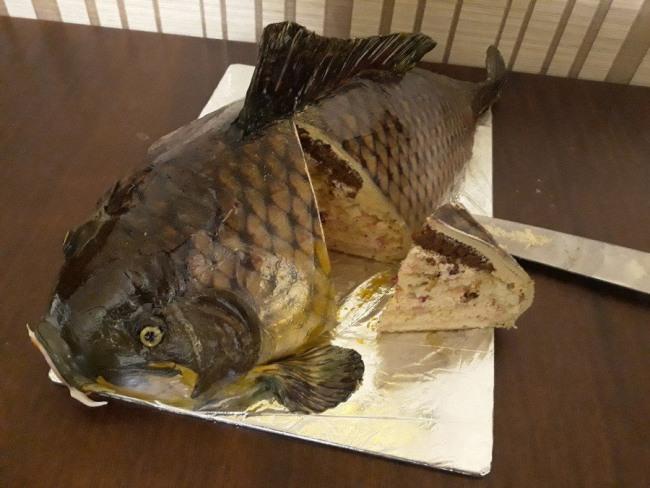 Фото прикол  про рыбу и торт