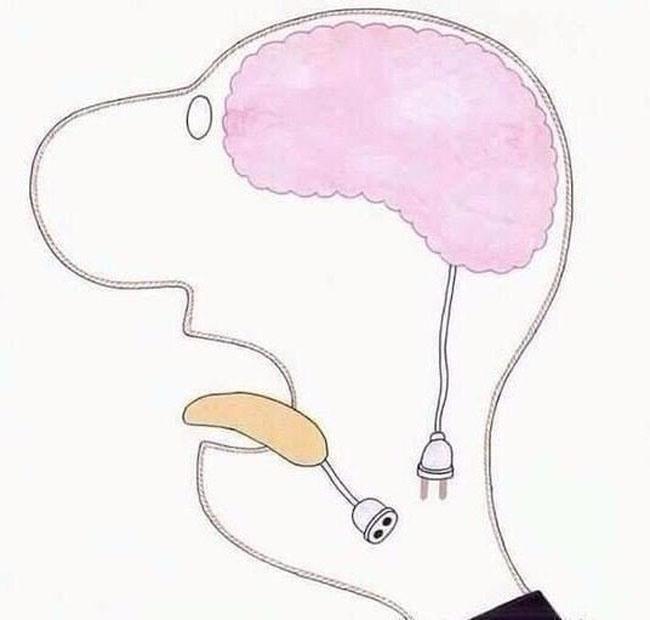 Картинка  про мозг и язык