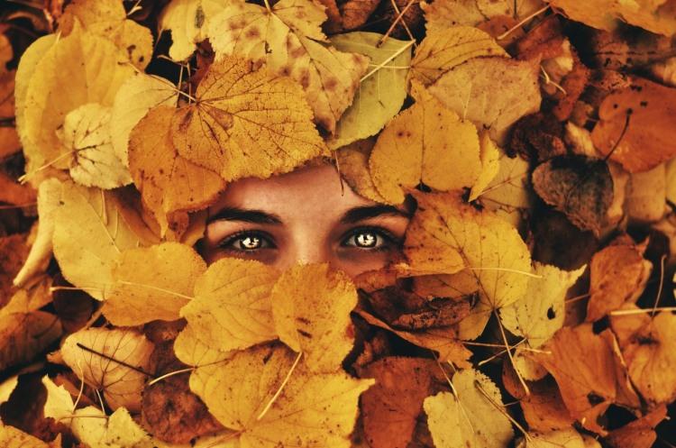 Фото прикол  про листья и глаза
