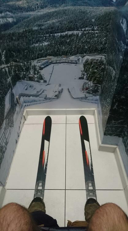 Фото прикол  про туалет и лыжников