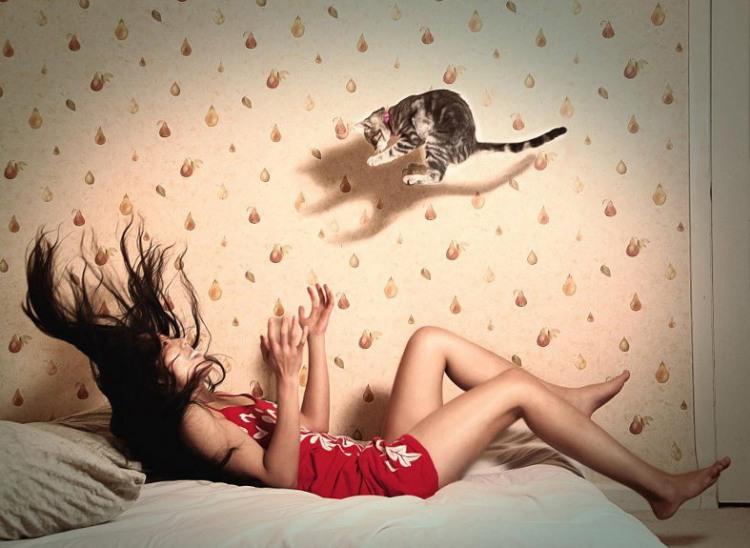 Фото прикол  про котов и девушек