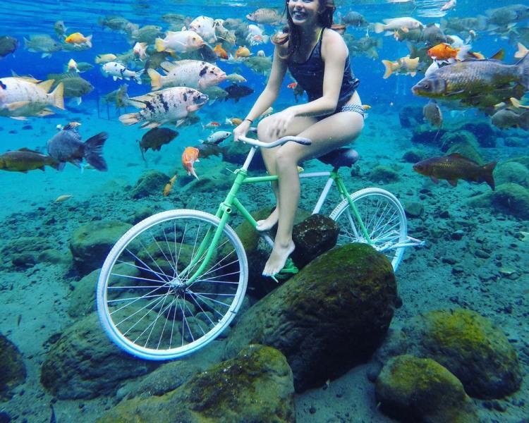 Фото прикол  про велосипедистов