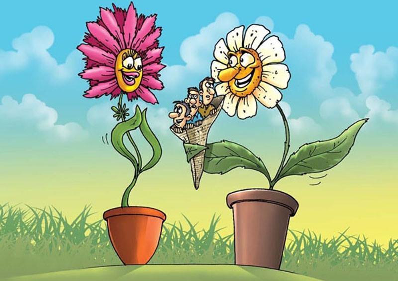 открытка цветы юмор