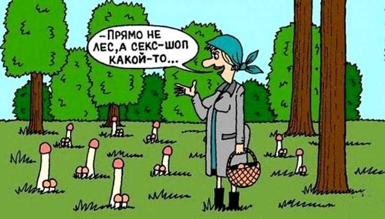 Картинка  про грибы пошлая