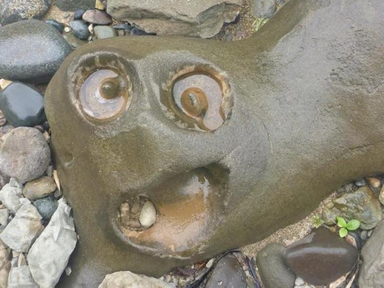 Фото прикол  про камни игра воображения