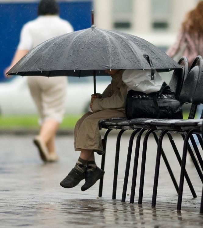 Фото прикол  про зонтик, детей и дождь