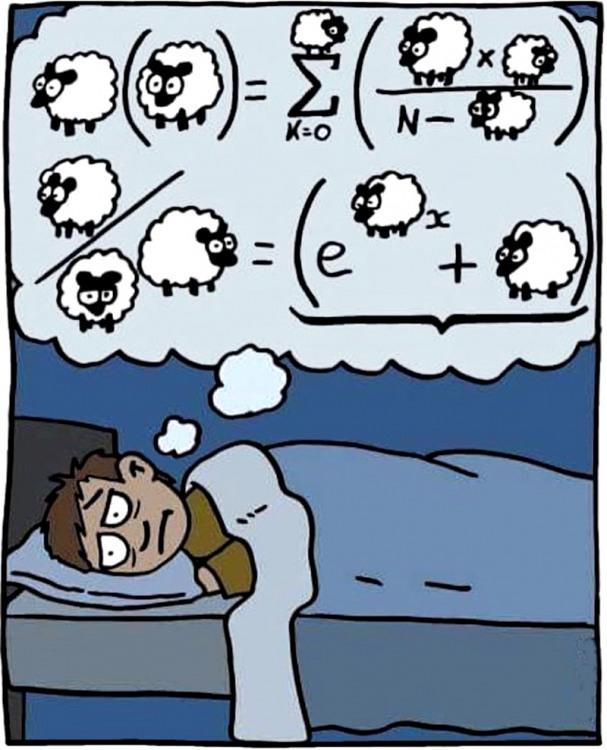 Картинка  про сон, овец и математиков