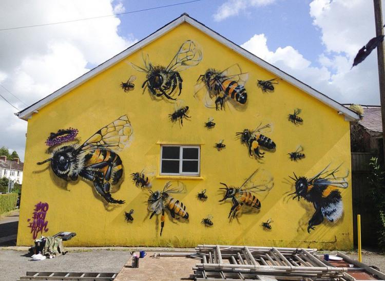 Фото прикол  про пчёл
