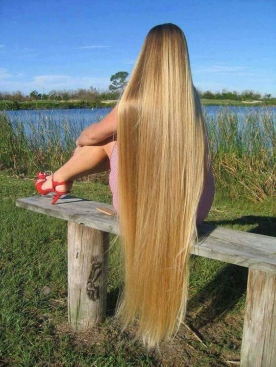 Фото прикол  про блондинок и волосы