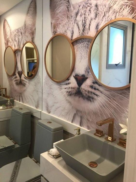 Фото прикол  про зеркало, котов и туалет
