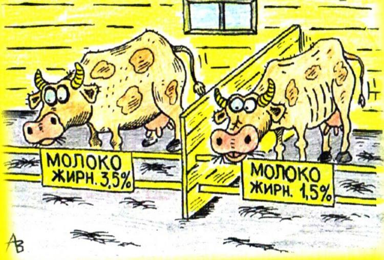 Картинка  про корову, жир и молоко