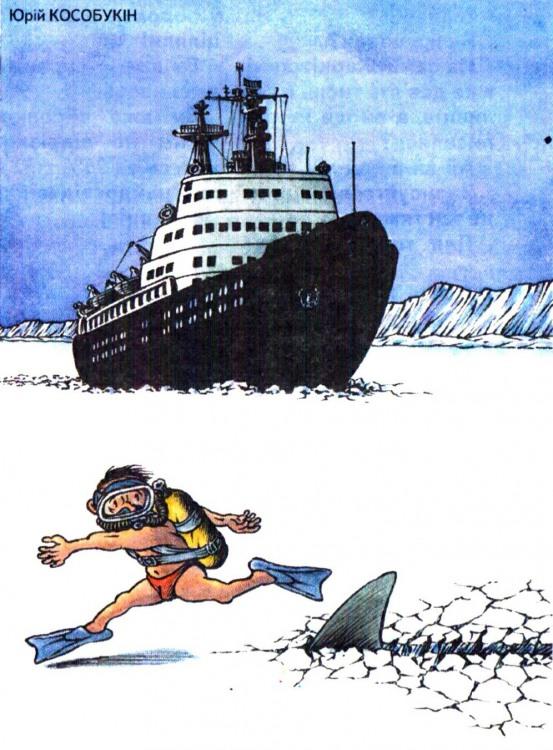 Картинка  про акул и лед