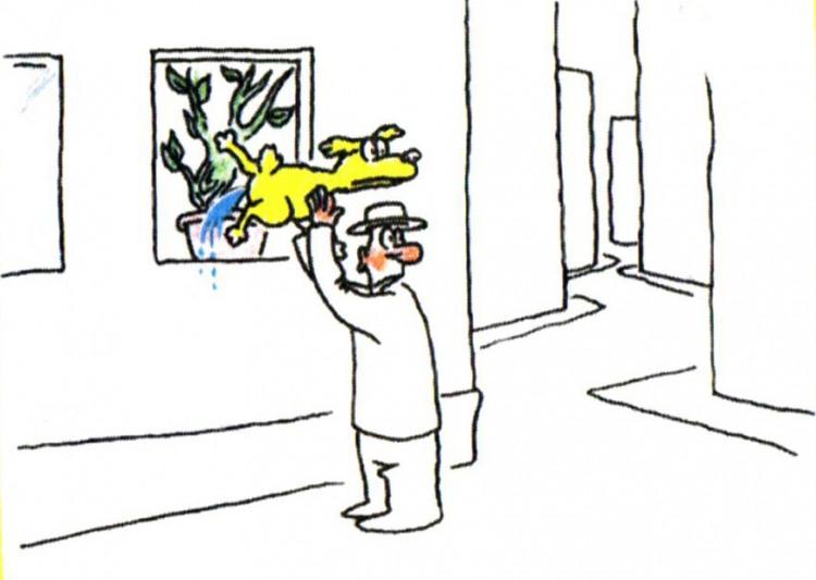 Картинка  про картины, собак и мочеиспускание