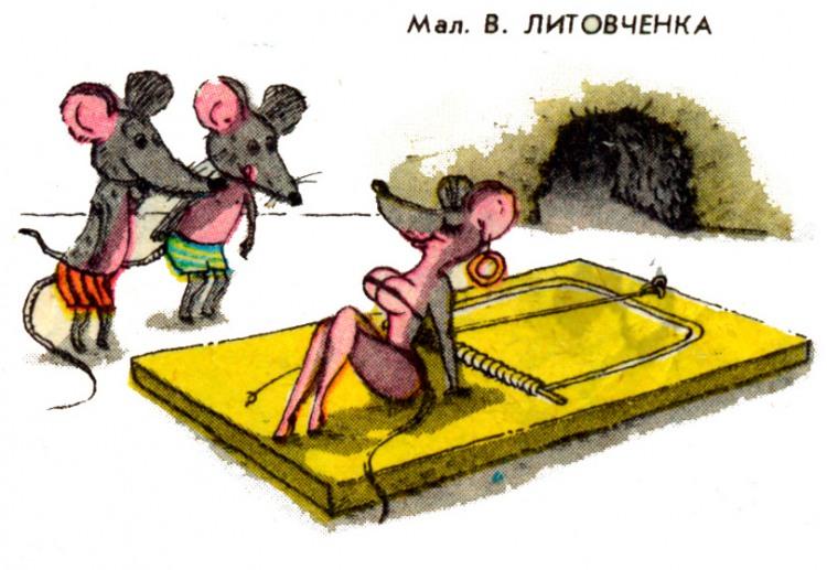 Картинка  про мышей, мышеловку пошлая