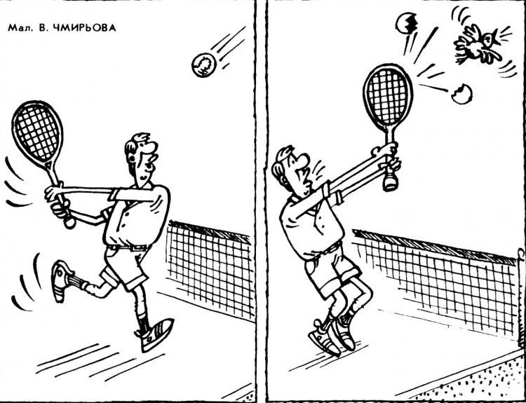 Картинка  про теннис и птиц