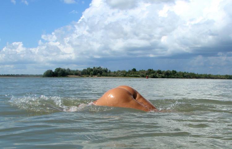 Фото прикол  про задницу, пловцов пошлый
