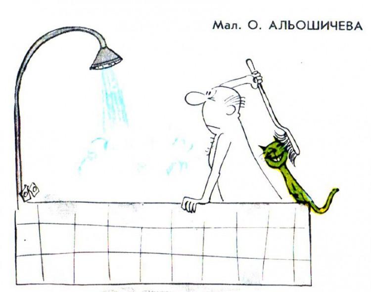 Картинка  про ванну и котов