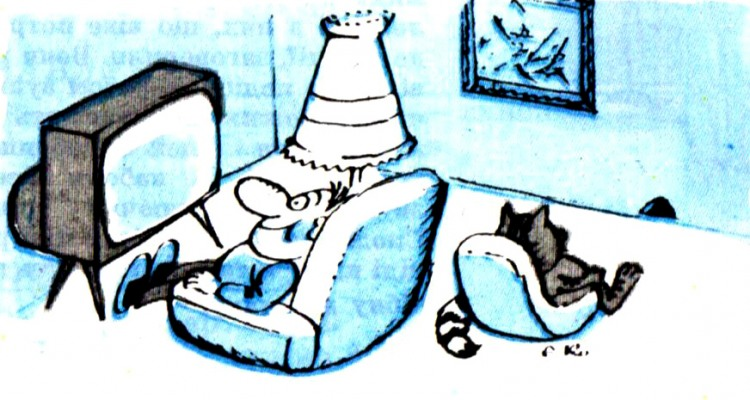 Картинка  про телевизор и котов