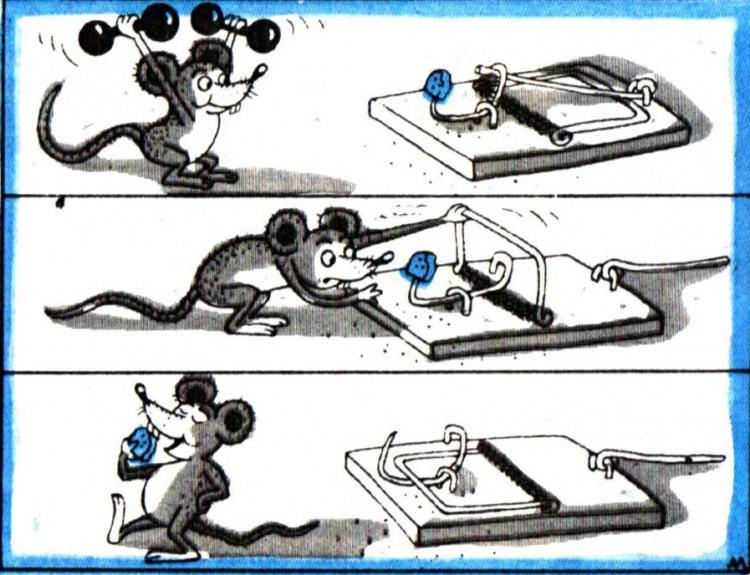 Картинка  про мышей и мышеловку