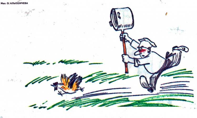 Картинка  про поваров и кур