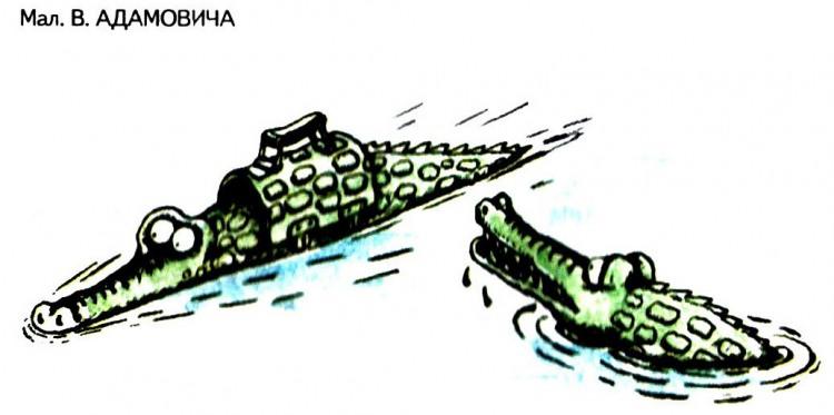Картинка  про крокодилов